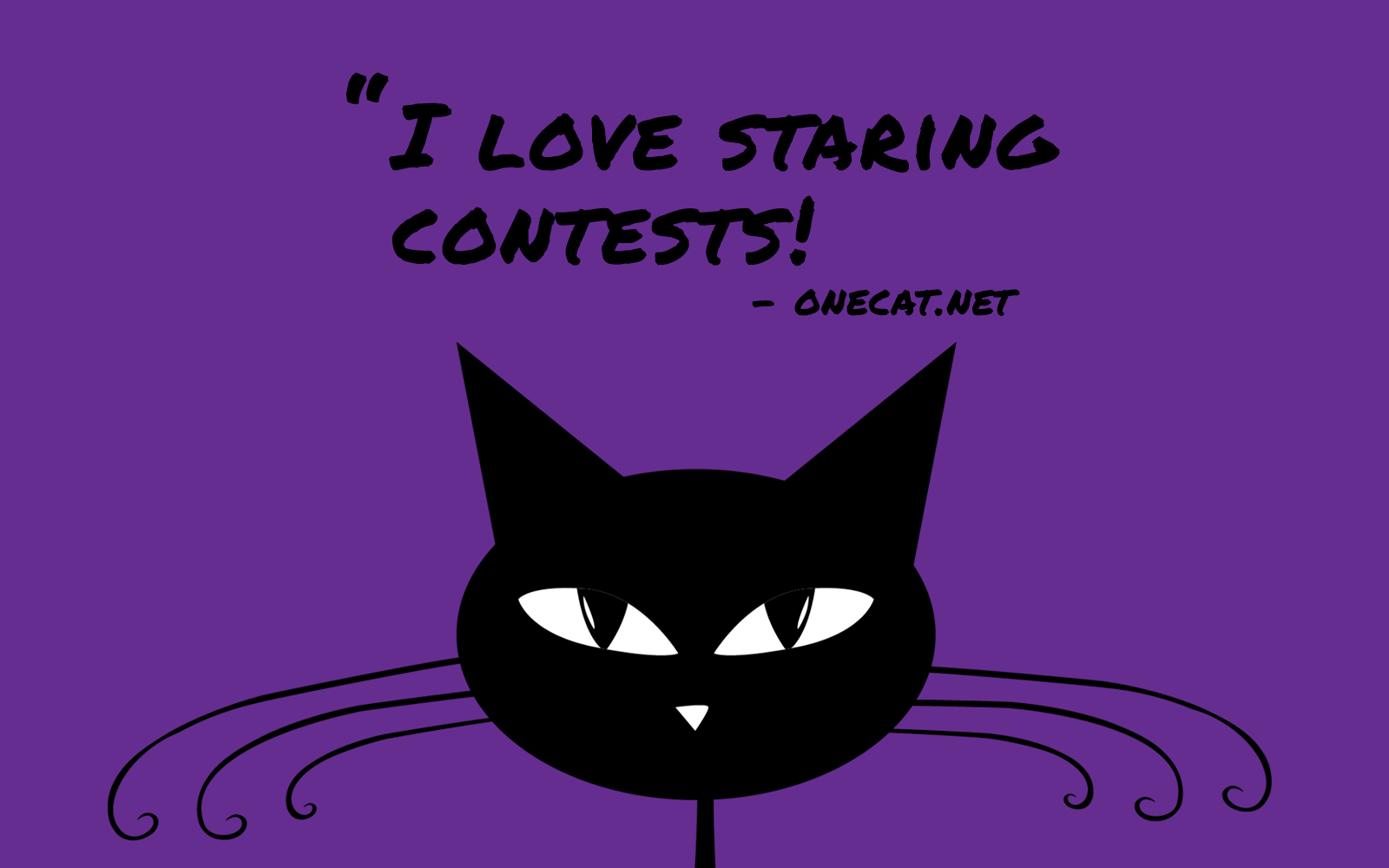 Cats Love Staring Contests