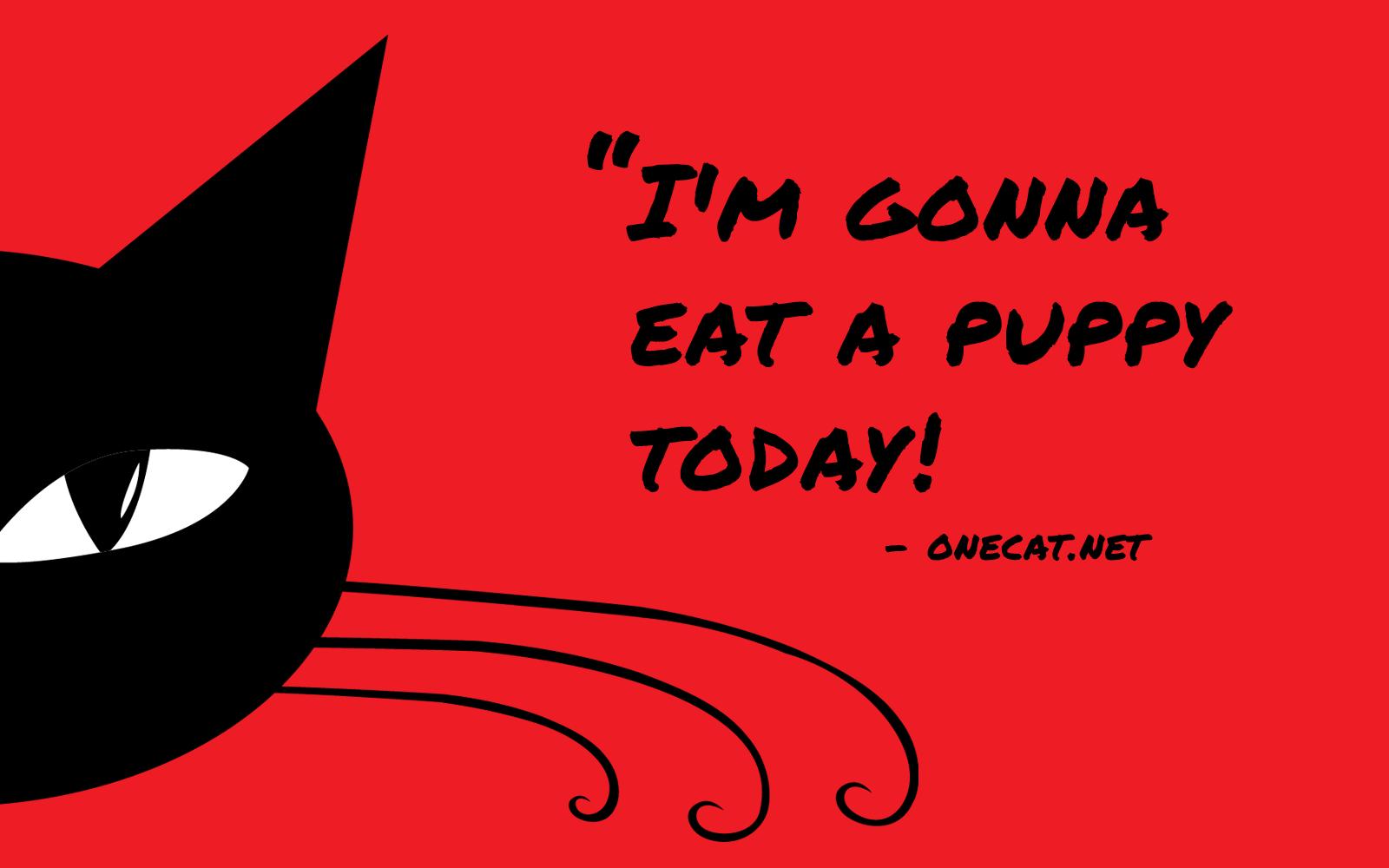 Cats vs Puppies
