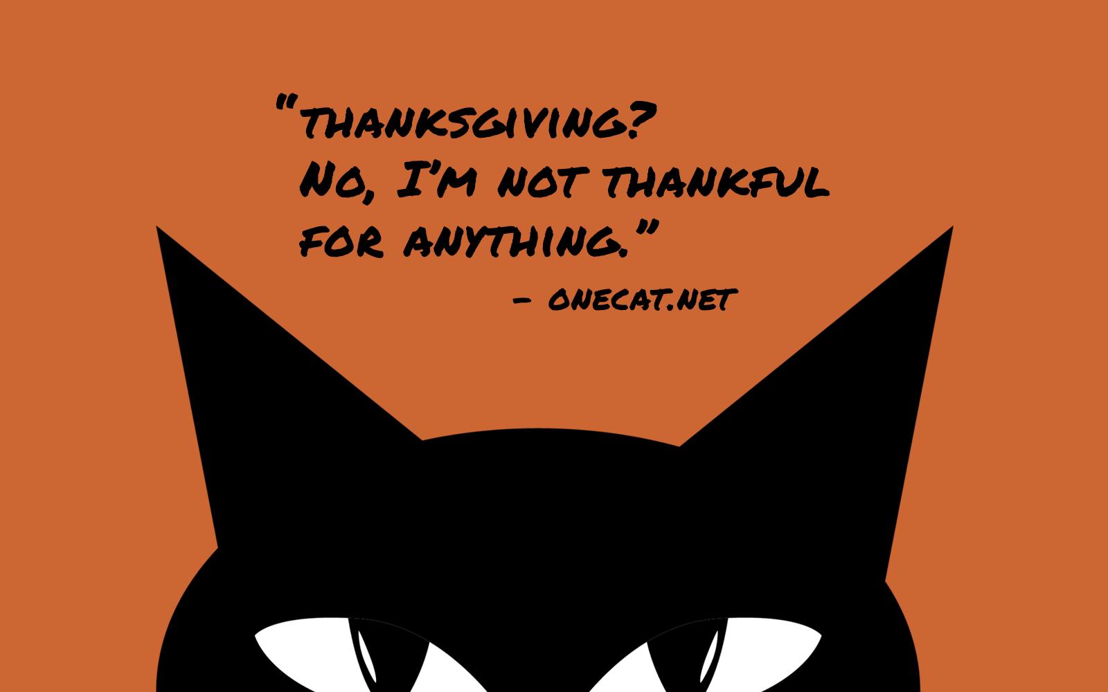 Cat Thanksgiving