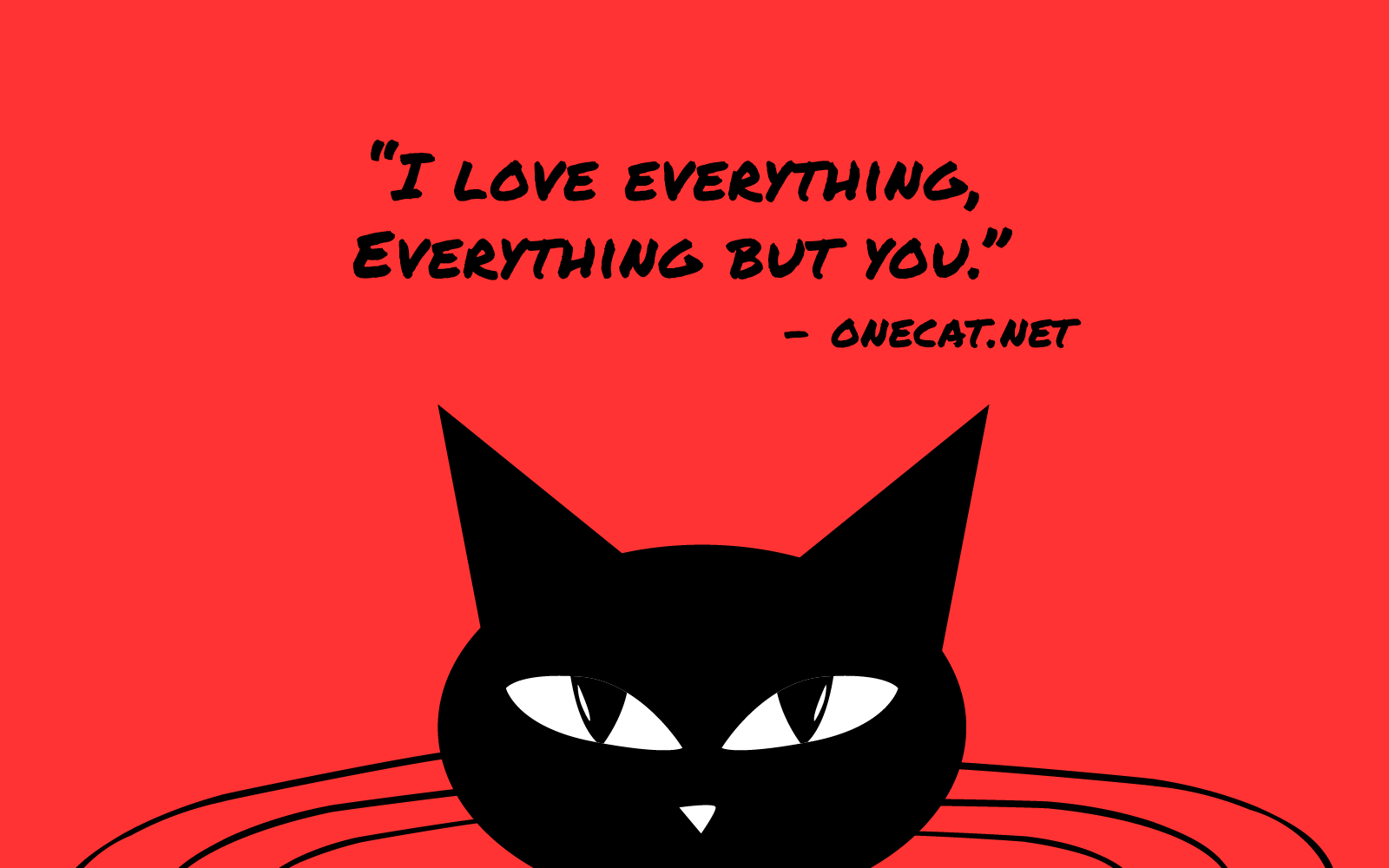 Cats Love Everything but Their Owners