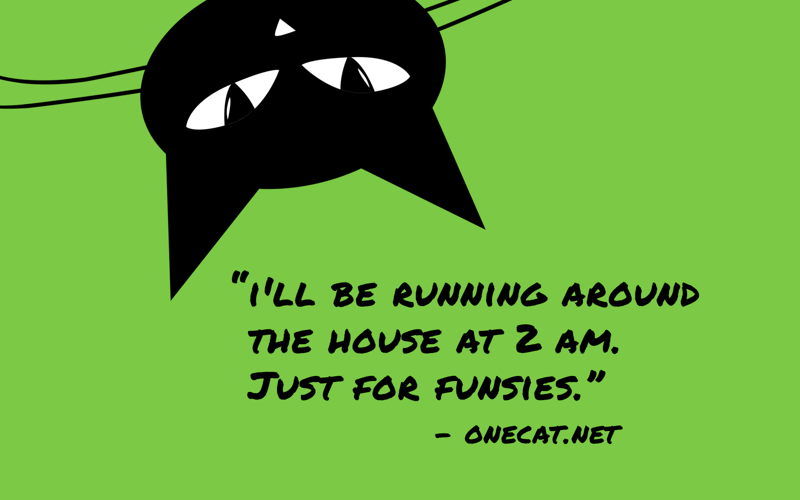Cats Love Running Around the House at Night