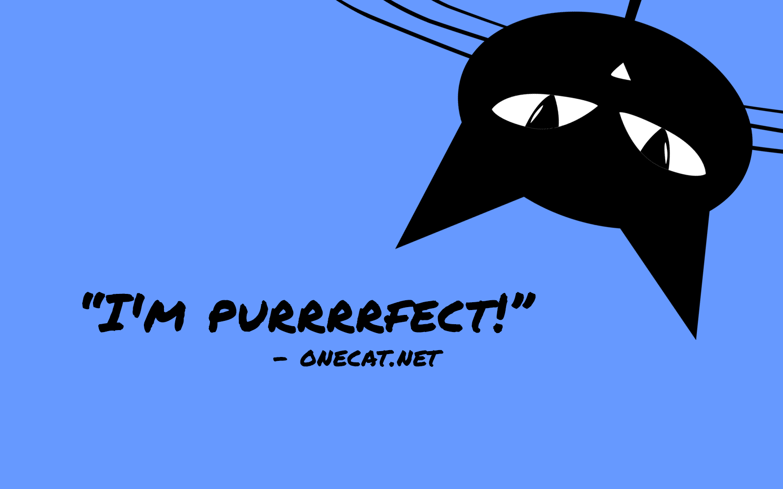 Cats Are Purrrfect